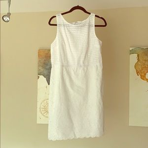 white lace LOFT dress BRAND NEW WITH TAGS size 8